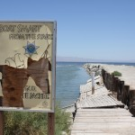 Like many abandoned locations, the signs were in complete disrepair. But this one was curious: It was posted by the Arizona Game and Fish Department. The Salton Sea is entirely Californian, as far as I know.